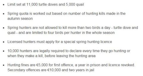 springhunting rules_bbc