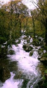 waterfall-nature-countryside-Scotland-Travel-Holiday